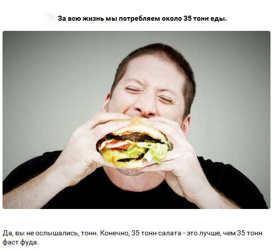 19 интересных фактов об обычном среднестатистическом человеке (20 картинок)