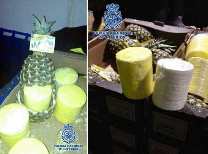 Попытка провезти 200 кг кокаина, спрятав его в ананасах (3 фото)