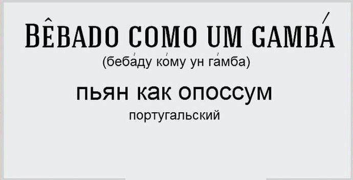 Как называют крайнюю степень опьянения в различных языках мира (15 картинок)
