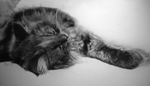 Суперреалистичные рисунки карандашом художника Пола Ланга (21 фото)