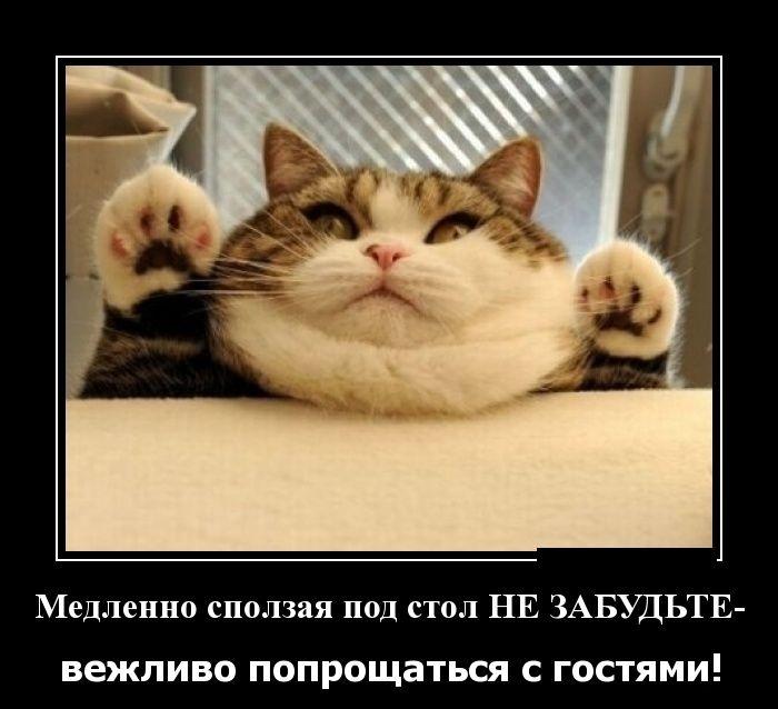 Подборка демотиваторов 08.06.2015 (26 картинок)