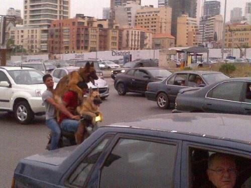 Фотографии идиотов из соцсетей 08.06.2015 (19 фото)