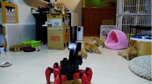 Гифки роботов (19 гифок)