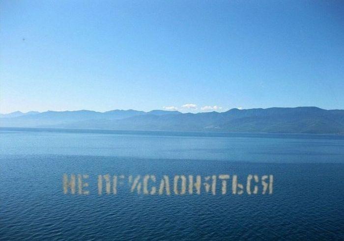 Подборка прикольных картинок 12.06.2015 (91 картинка)