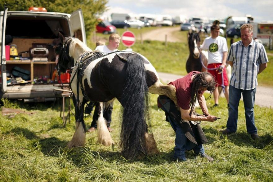 Самая большая в мире цыганская ярмарка (16 фото)