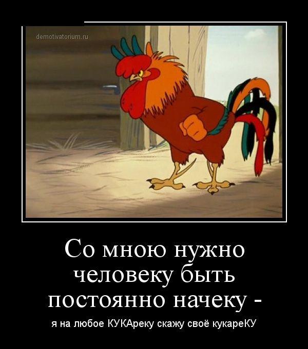 Подборка демотиваторов 15.05.2015 (25 картинок)