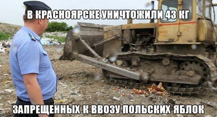 Подборка прикольных фото 16.06.2015 (85 фото)
