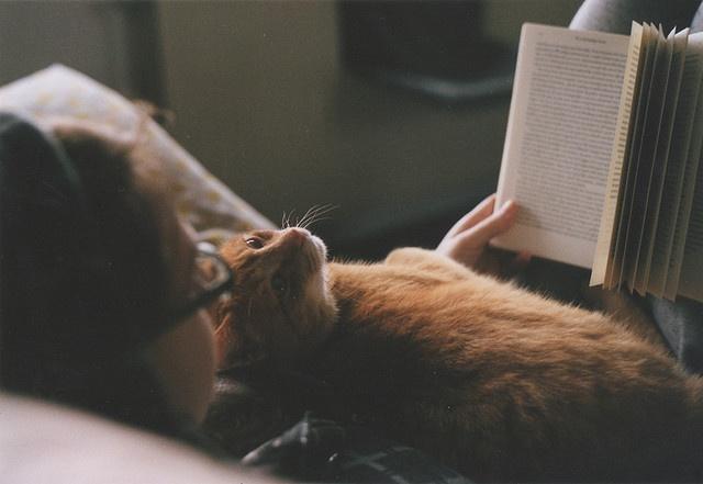 11 способов успокоить свои мысли перед сном