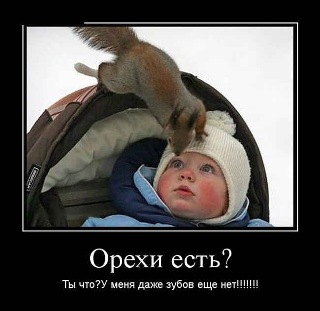 Подборка забавных демотиваторов 17.06.2015 (24 картинки)