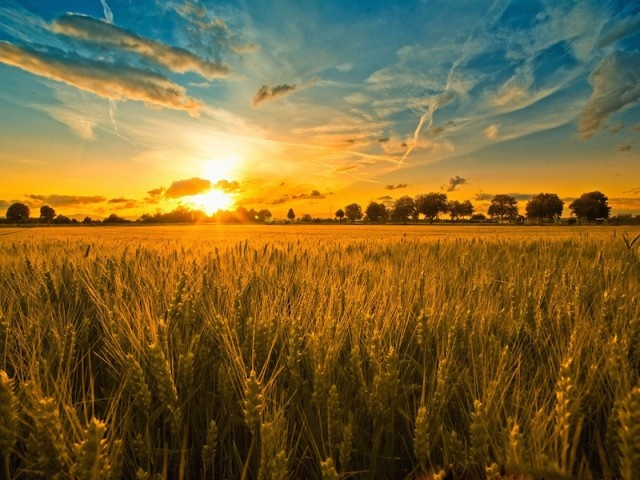 Интересные факты о летнем солнцестоянии
