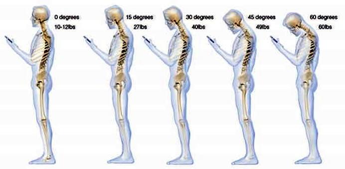 Интересные факты о нашем теле (13 фото)