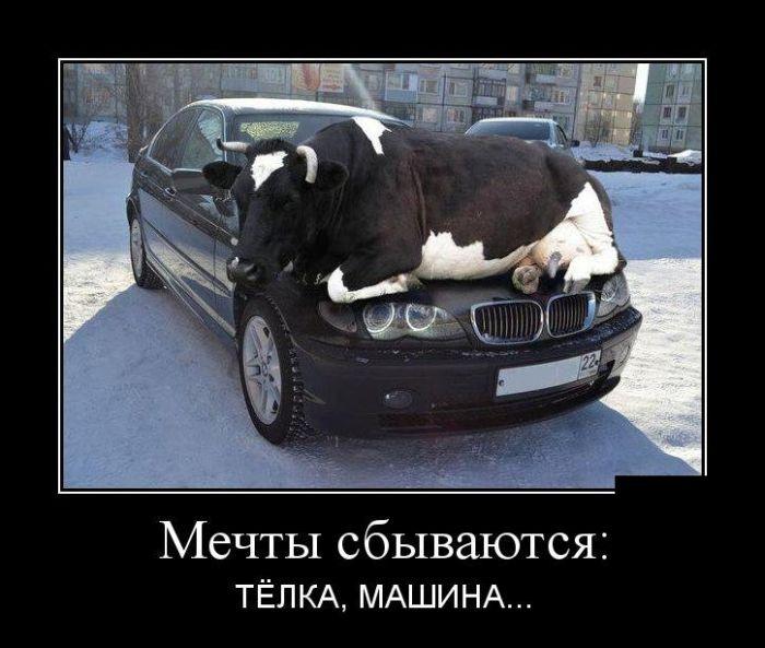 Подборка смешных демотиваторов 26.06.2015 (25 картинок)