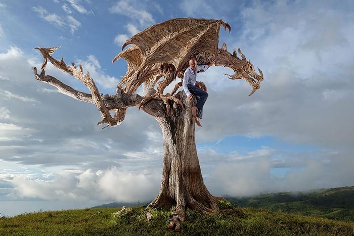 Классные скульптуры из коряг (16 фото)