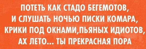 Подборка прикольных картинок 27.06.2015 (63 картинки)