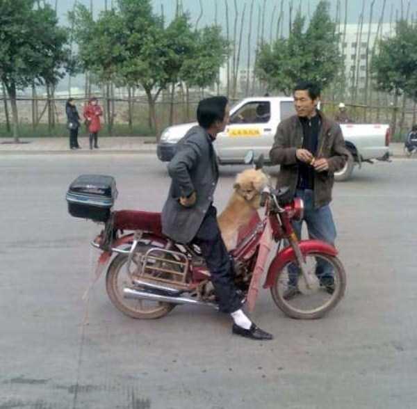 Фотографии из соцсетей стран Азии (48 фото)