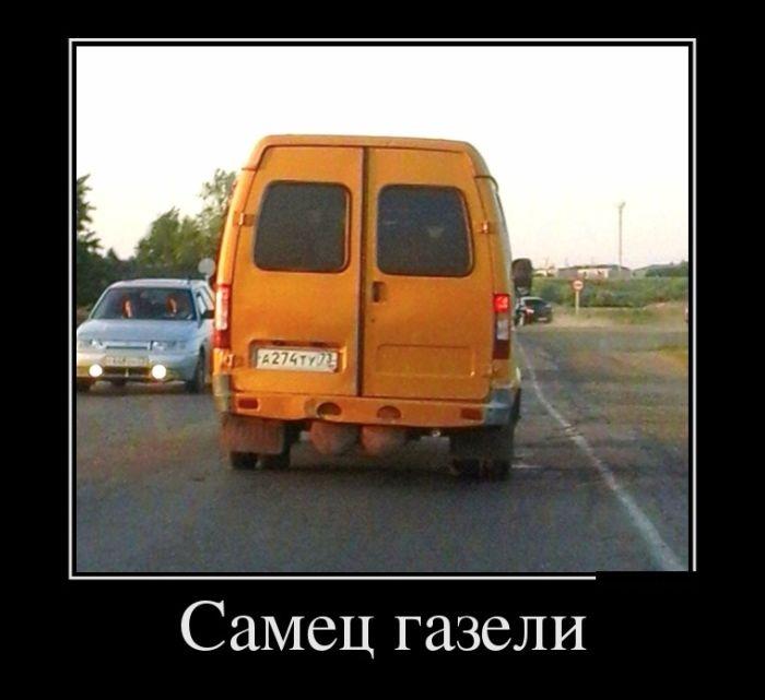 Подборка смешных демотиваторов 30.06.2015 (25 фото)
