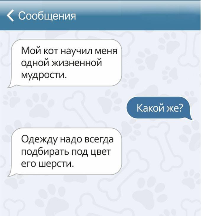 Забавные СМС от владельцев домашних животных (15 картинок)