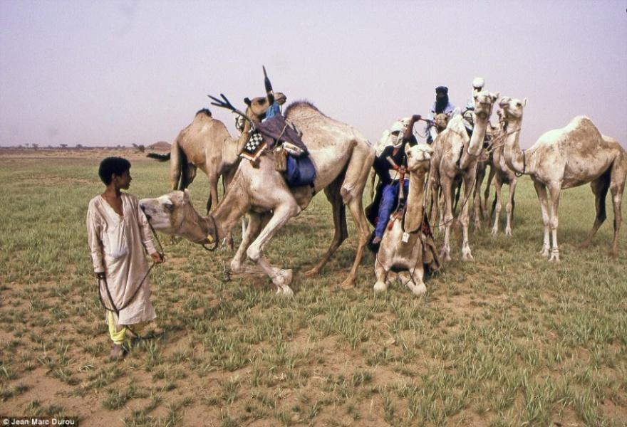 Туареги - племена, в которых главное слово принадлежит женщинам (19 фото)