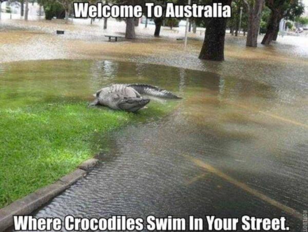 Самой опасной страной считается Австралия