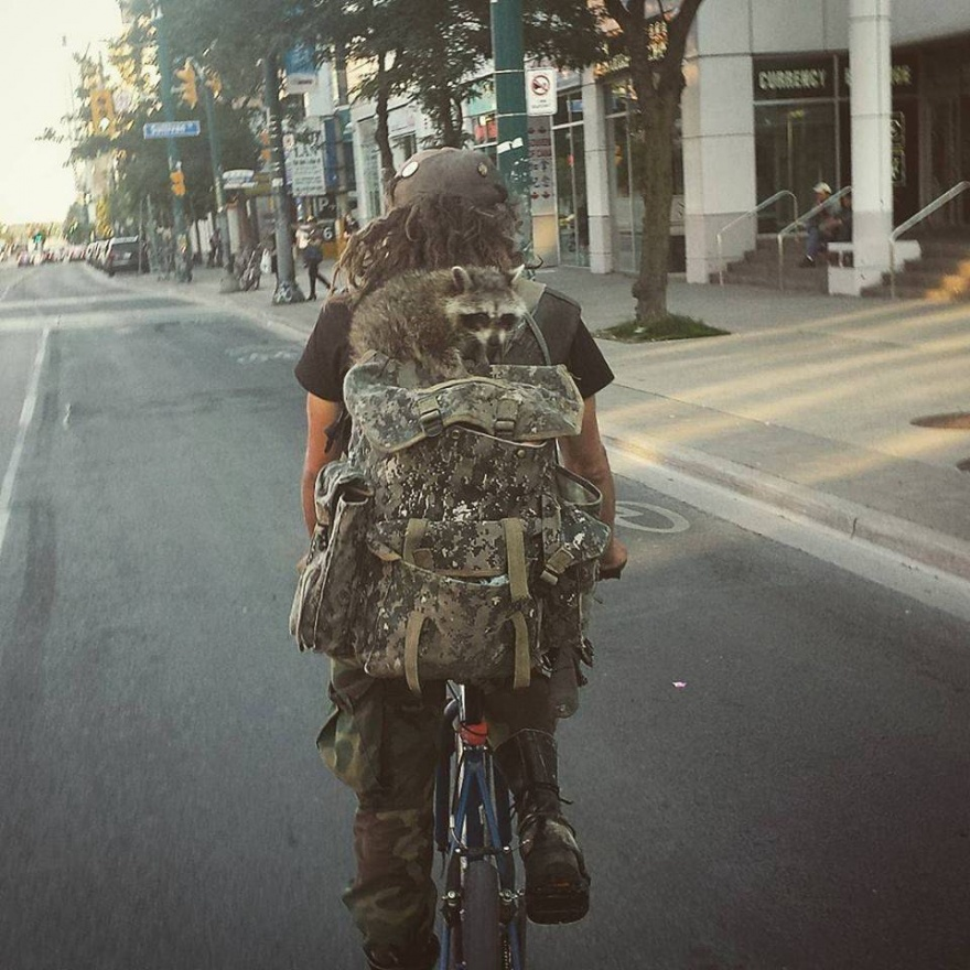 Подборка интересных фото 08.07.2015 (49 фото)