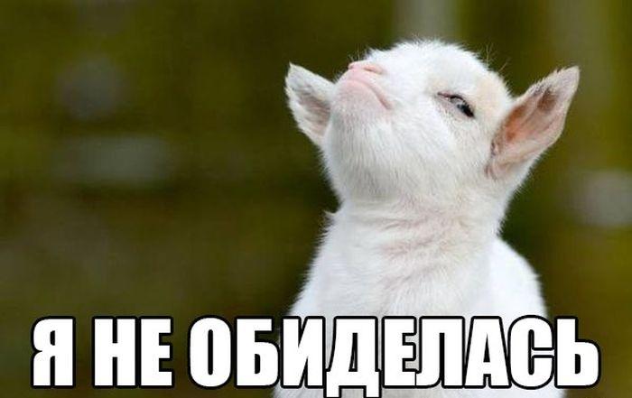 Подборка демотиваторов 16.07.2015 (30 фото)