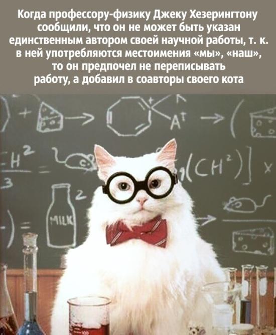 Так шутят ученые (20 картинок)