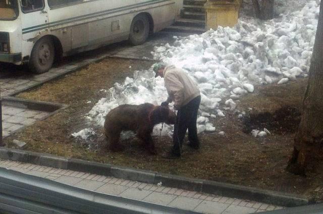 Такая разная Россия