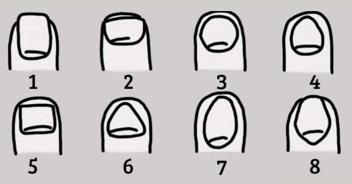 Характер человека по форме ногтей
