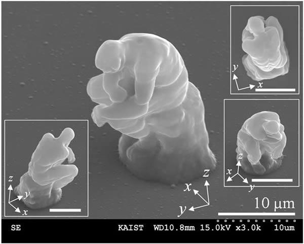 Самые микроскопические вещи в мире