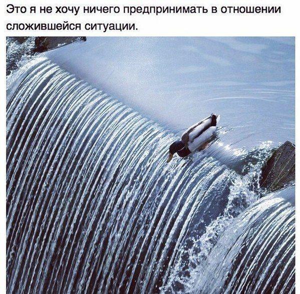 Подборка прикольных картинок (92 фото)