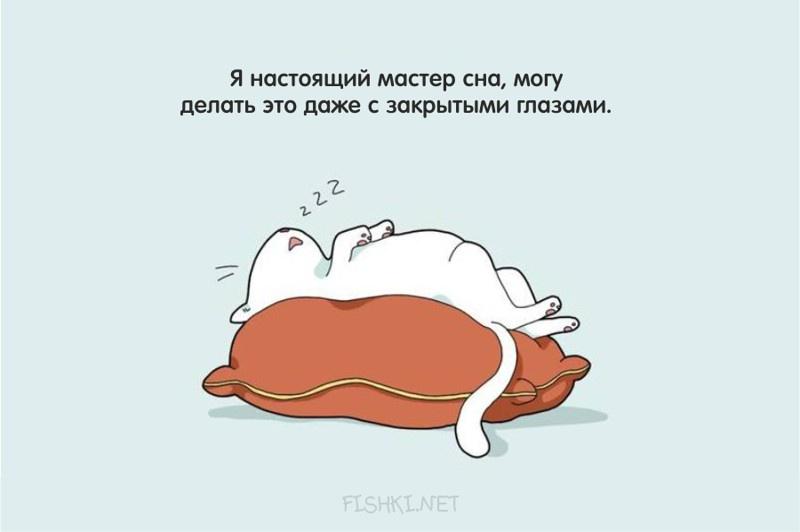 Любителям поспать посвящается... (14 открыток)