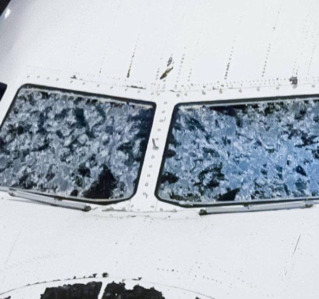 Аварийная посадка, поврежденного градом самолета (4 фото)