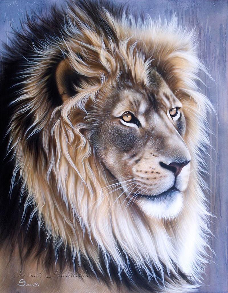 Необыкновенные портреты животных (27 иллюстраций)
