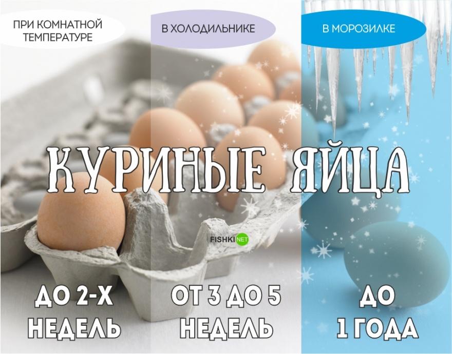 Срок годности продуктов (12 фото)