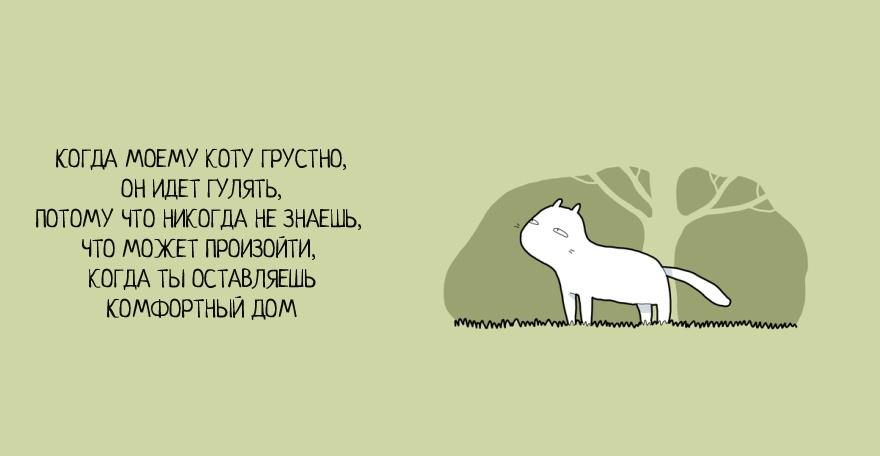 Как победить грусть на примере кота