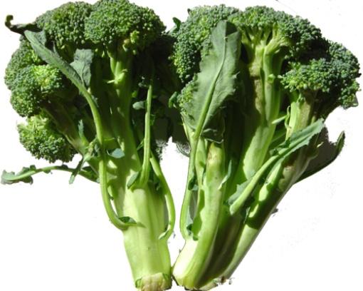 какие продукты помогают похудеть в ляшках