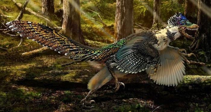 Несколько фактов о динозаврах (6 фото)