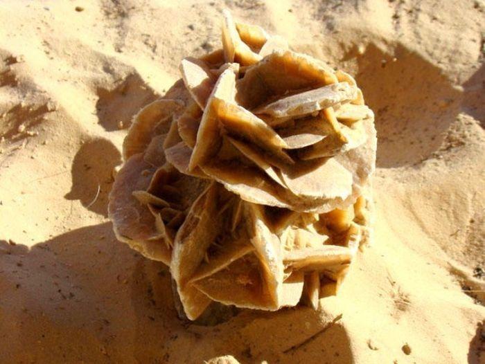 """Восточный сувенир """"роза пустыни"""" (11 фото)"""
