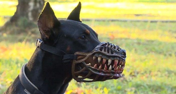 """Намордник, который превратит вашу милую собачку в """"монстра"""""""