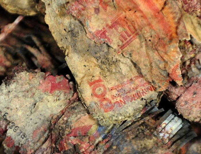 16 000 долларов сгнили в земле (3 фото)