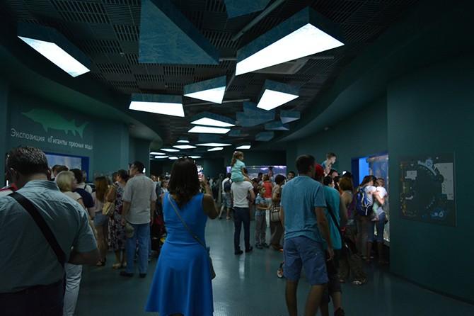 Внутри Москвариума