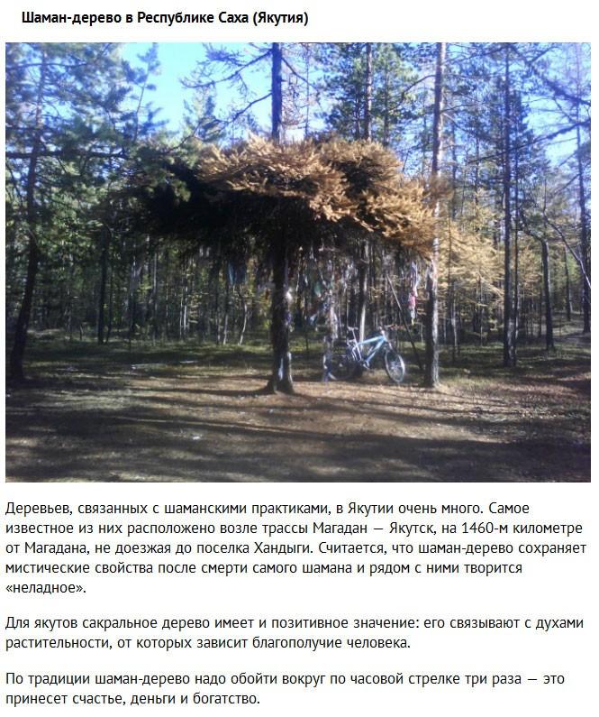 Самые загадочные места нашей страны (10 фото)