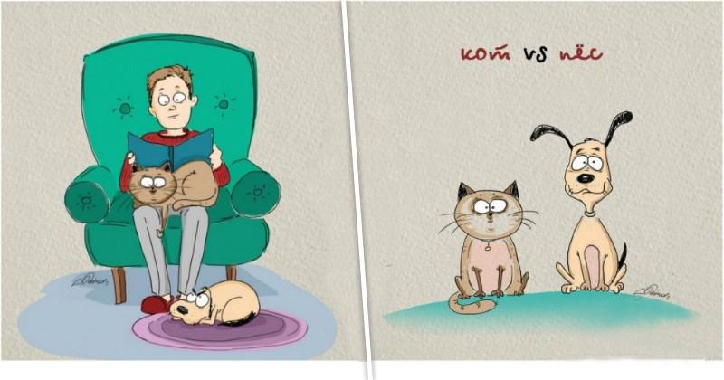 Чем отличаются кошки и собаки?