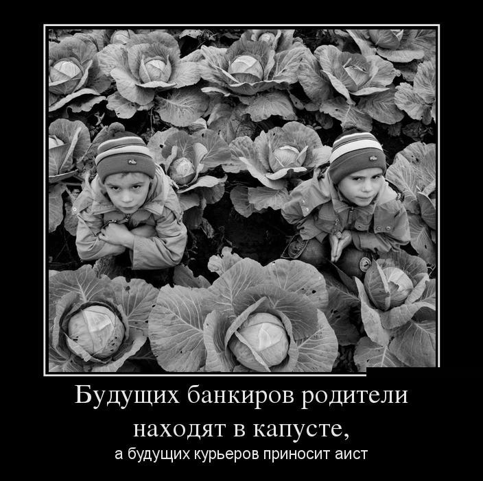 Демотиваторы о родителях (18 фото)