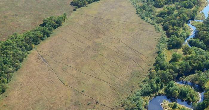 Что это за линии в поле? (5 фото)