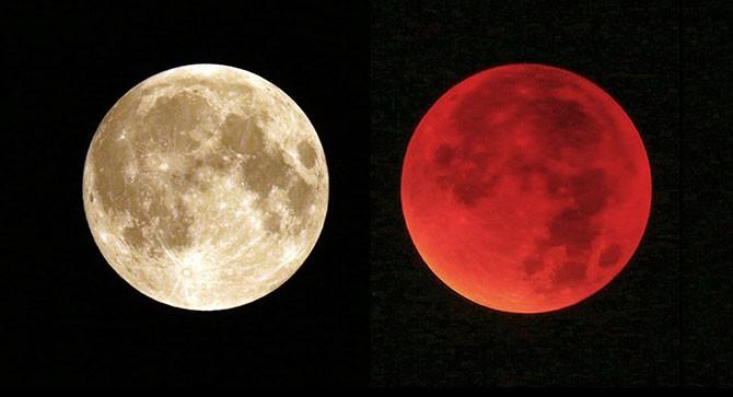 """Фотографии """"кровавой"""" Луны из разных уголков земли"""