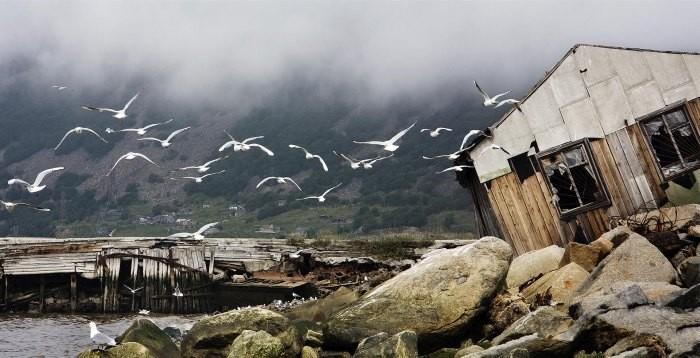 Лучшие снимки с фотоконкурса «Самая красивая страна» (10 фото)