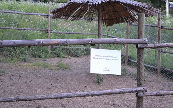 Интересные таблички в зоопарке (29 фото)