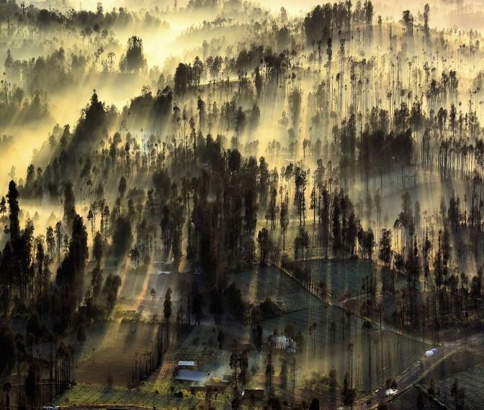 Необыкновенные снимки c фотоконкурса National Geographic Photo Contest 2015 (23 фото)