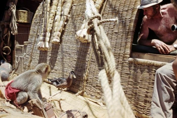 Путешествие на папирусной лодке «Ра» Юрия Сенкевича и Тура Хейердална (11 фото)